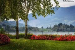 ....anche questo  autunno .... (lefotodiannae) Tags: lefotodiannae monasterolo del castello lago di endine bergamo lombardia italia colore paesaggio panorama autunno