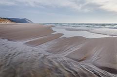 Shape Sifter (Aaron Springer) Tags: michigan northernmichigan lakemichigan thegreatlakes lakeshore shoreline beach sandbar dune water outdoor nature landscape