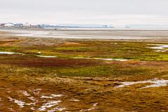 Arctic Landscape (danielfoster437) Tags: adventure arctic arcticcircle arcticsummer arctictundra extremeterrain landscape mountain nature outdoors spitsbergen summer svalbard svalbardsummer terrain tundra wilderness