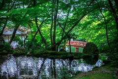 (蔡藍迪) Tags: 醍醐寺 醍醐 daigoji daigo japan japanese japanesegarden 日本 kyoto 京都 二度目の京都 nikon nidomenokyoto 50mm 18g d600 尼康 關西