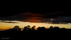 DSC_0248 (timmie_winch) Tags: nikon nikond3000 d3000 august august2016 2016 sun sunset sunsetsuffolk sunsetoversuffolkcountryside sunsetovercornfields sunsetovercornfield silhouette 18105mm 18105vr nikon18105mmvrlens shadows golden goldenhour goldenlight elliedunn ellie eleanordunn ells eleanor ellsdunn dunn landscape landscapephotography landscapephotographer naturephotographer naturephotography nature timwinchphotography tim timwinch winch debenham ip14 suffolk