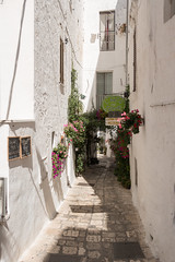 IMG_7708 (jaglazier) Tags: 18thcentury 18thcenturyad 2016 8216 apulia architecture august buildings centrostorico cittabianca cityscapes copyright2016jamesaglazier hilltowns houses italy oldtown ostuni urbanism whitecity cities cobbled streets streetscapes whitewash whitewashed puglia