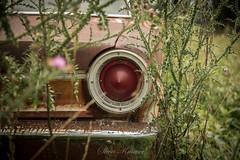 Fairlane Farm-24 (hiker083) Tags: abandoned farmhouse decay decrepit derelict cars vacant oncewashome