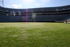 IMG_9783 (UGA College of Ag & Environmental Sciences - OCCS) Tags: grass turfgrass tiff419 419 sanfordstadium privet hedge hedges scoreboard