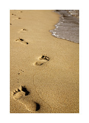 Playeando... (ngel mateo) Tags: ngelmartnmateo ngelmateo santander cantabria espaa playa loredo arena pisadas dorado huella pies mojado textura footprint footprints golden sand texture wet feet