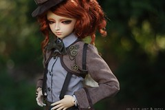 [STORY]: Preview (sephyelysian) Tags: ronan delfdreamingelfvampirechiwoo story delf bjd chimerawriting