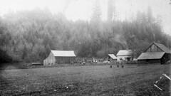 79-5-1 Jacob Hileman farm (jayswof) Tags: mabel marcola isabel oregon ranch farm