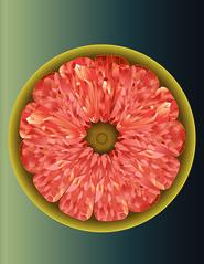 Print (peerachatchaiyapan) Tags: grapefruit citrus paradisi