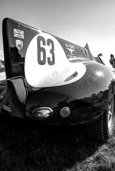 The rear of the year B&W (Torquemada1965) Tags: arden british day