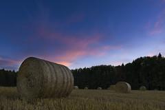 Round bales at sunset (Simon Yemane) Tags: sunset bales round sky forest