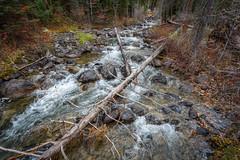 Lake Creek (scepdoll) Tags: phelpslake grandtetonnationalpark wyoming rockefellercentre moosewilsonroad aurancesrockefellerpreserve