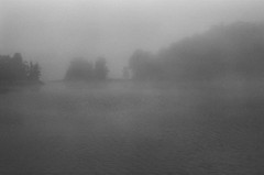 prelude (gguillaumee) Tags: film grain sunrise fog morning quebec countryside island lake nature wild water eerie analog nikonf3