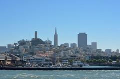 Leaving the Pier (Neal D) Tags: california sanfrancisco skyline skyscraper transamericabuilding coittower building