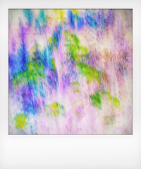 Just blobs of pretty colors. (jeanne.marie.) Tags: intentionalcameramovement instant blue purple green inverted wildflowers flowers intentionalcameramotion icm colorplay colorful iphone5s iphoneography blur abstract 100xthe2016edition 100x2016 image94100