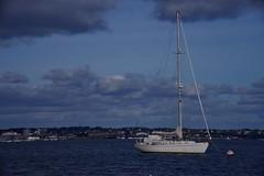 1331-14L (Lozarithm) Tags: arne rspb dorset landscape estuary boats coastline pooleharbour k1 55300 hdpda55300mmf458edwr