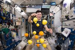 Kimiya Yui (JP) (Ars Electronica) Tags: associationofspaceexplorers wf ase communityday arselectronicacenter austria upperaustria linz space iss visit deepspace8k internationalspacestation astronaut kosmonaut