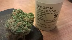 Blue Cheese (Stevie Silvester) Tags: blue cheese hybrid sativa indica strain collective awakenings dispensary nep northeastportland northeast ne sandy blvd portland oregon or 503 dank smoke chronic weed pot medical marijuana ptown pdx pnw pacific northwest
