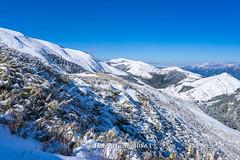 Harry_30863,,,,,,,,,,,,,,,,,,,,Hehuan Mountain,Taroko National Park,Snow,Winter (HarryTaiwan) Tags:                    hehuanmountain tarokonationalpark snow winter       harryhuang   taiwan nikon d800 hgf78354ms35hinetnet adobergb mountain