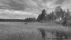 20160618095615 (koppomcolors) Tags: koppomcolors sweden sverige värmland varmland scandinavia