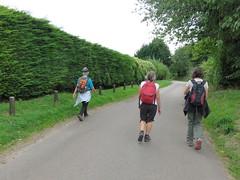UK - Buckinghamshire - Near Fawley - Walking along footpath (JulesFoto) Tags: uk england clog centrallondonoutdoorgroup buckinghamshire fawley walking