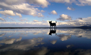 Paty y su reino de nubes/Paty and his kingdom of clouds