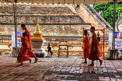 Young monks (cattan2011) Tags: streetphotography streetphoto streetpics streetart landscapephotography landscape travelblogger traveltuesday travel religious buddhism buddhist temple chiangmai thailand