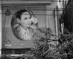 HM King Bhumibol Adulyadej (1927-2016) (jcbkk1956) Tags: thailand bangkok hmtheking hmkingbhumiboladulyadej nikon nikkor d3300 sign advertising bank thonglo mono blackwhite mourning