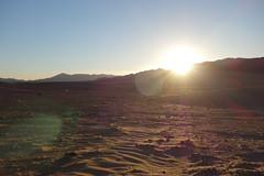 DSC06746 (cle1759) Tags: saharra morroco travel paisaje