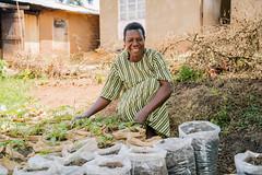 UG1605_048 (Heifer International) Tags: uganda ug