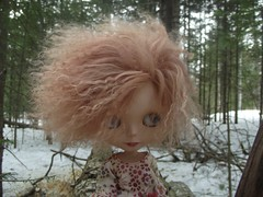 Peekaboo in the great north woods