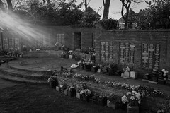 Garden of Remembrance (ammgramm) Tags: uk flowers light sunset england bw white black contrast garden evening blackwhite memorial shadows cheshire naturallight remembrance sunflare plaques sandbach fujifilmx100s sandbachcemetery camerajpeglr44