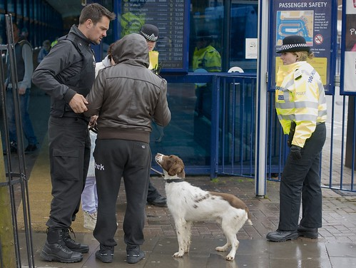 Day 136 - Drugs dog in West Bromwich town centre
