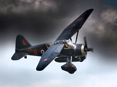 Photo of Lysander - Old Warden