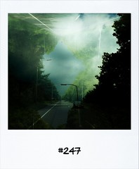 "#DailyPolaroid of 24-5-13 #247 • <a style=""font-size:0.8em;"" href=""http://www.flickr.com/photos/47939785@N05/8956459547/"" target=""_blank"">View on Flickr</a>"