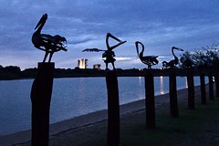 Mechanical Pelicans (armct) Tags: sculpture publicart pelican metal mechanical silhouette dusk night goldcoast currumbin estuary river lake horizon nightlights queensland riverside richardmoffatt richard moffatt d810 nikon