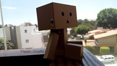LONELY. (PlasticGiraffe) Tags: toy toyphotography photography action actionfigures toyart toypics toys ac acba awesome adorable amazing japanese japanesetoys danbo danboard anime cute collectable