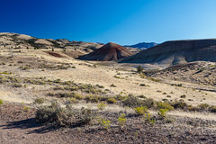 Painted Hills - 4 (rpdphotography) Tags: paintedhills