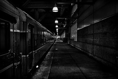 Day 314/365 (Alexander Marte Reyes) Tags: transportation blackandwhite trains boston southstation light hall station