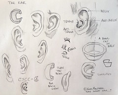 The Ear - work page in pencil (Nora MacPhail) Tags: ear ears how draw pencil sketch sketching drawing portrait face workpage exercise lesson noramacphail