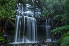 Russell Falls (robertdownie) Tags: trees water tree rocks green waterfall australia moss cascades tasmania ferns tasmanian wilderness world heritage area falls russell mount field national park