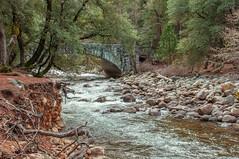 _DSC8709 (noshoot.jimd) Tags: environment flora places seasons water foliage parks rocks streams trees winter yosemitenp california usa