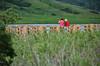 Elkwater Photo Takers (pokoroto) Tags: elkwater photo takers 7月 七月 文月 shichigatsu fumizuki bookmonth 2016 平成28年 summer july アルバータ州 alberta canada カナダ