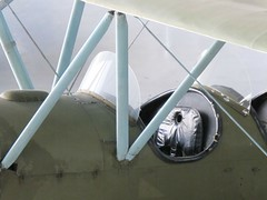 "Polikarpov Po-2 50 • <a style=""font-size:0.8em;"" href=""http://www.flickr.com/photos/81723459@N04/28955098453/"" target=""_blank"">View on Flickr</a>"
