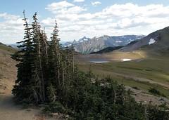 Mt Rainier National Park (suswann) Tags: mtrainiernationalpark frozenlake alpine