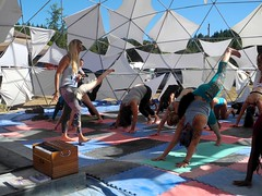 yoga (citymaus) Tags: enchantedforest gathering 2016 july mendocino county music festival musicfestival transformational norcal forest rave wisdom university community center workshop workshops classes yoga class outdoor dome geodesic