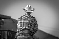 Desperados - Cowboy mounted shooters (1) (Feddal Nora) Tags: desperado desperados mountedshooter cowboy cowboymountedshootingassociation horse horseback arena duel cowboyboots rifle pistol horseriding hat purs bullet mounted shooter spurs eperon cheval tir chapeau canon70200 canon70200f28isnora norafeddal vincentarena