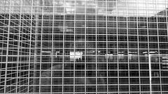 rectangles (Frankfurt Airport) (Stefan Giese) Tags: namibia africa frankfurt flughafen airport gebude building glas schwarzweiss sw bw rechteck quadrat panasonic fz1000