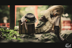 - The Garden of Tadasu- (cnvl) Tags: doll volks dd dollfie  yuki morikawa cnvl summer kyoto shimogamojinja sony a7r sigma 24105mm 75mm