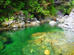 P7230252 (mina_371001) Tags: canada lifeincanada lifeinvancouver beautifulplace nature olympusomdem10 photographywork