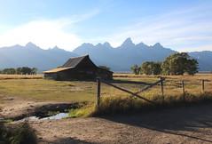 Old Log Barn and Grand Tetons, Mormon Row - Grand Tetons National Park, Wyoming (danjdavis) Tags: mormonrow grandtetonsnationalpark nationalpark wyoming barn oldbarn logbarn grandtetons rockymountains mountains